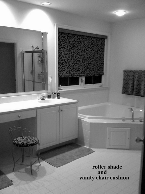 roller shade bathroom